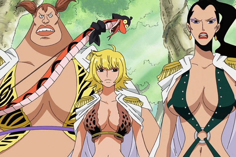 one piece rule 34