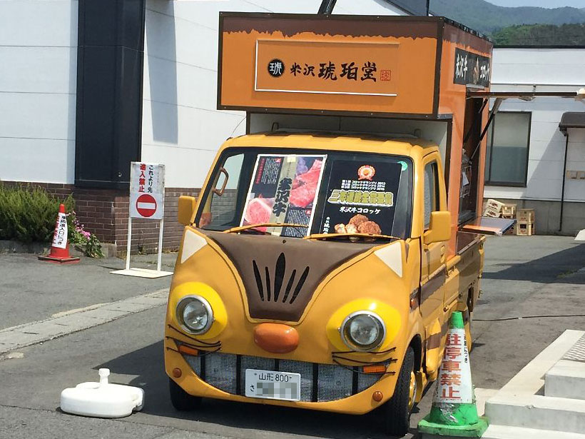 Weird catbus that is not a rental car!